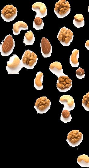 nuts-decor
